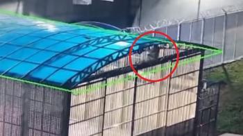 北韓前特種兵越獄!飛爬6公尺高圍欄 脫逃影片曝光