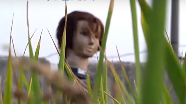 田裡驚見「人頭」 農民:都是鳥害的!