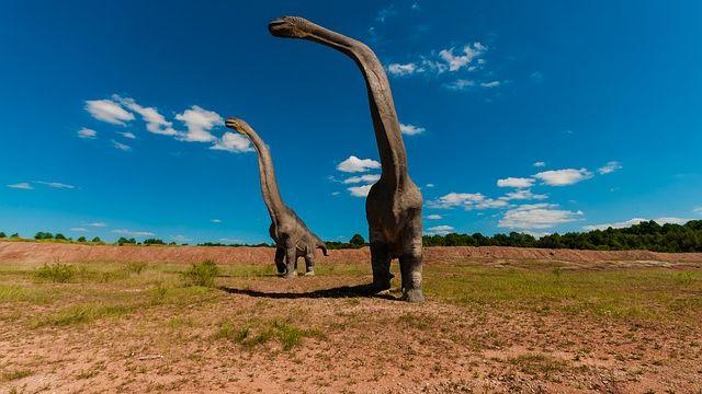 人類是地球最大殺手 第6次物種滅絕ING