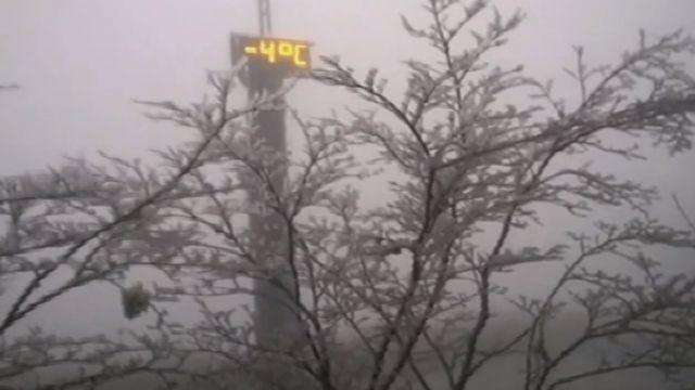 差一點點下雪!滿滿「霧淞」染白太平山