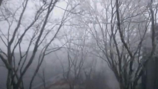 寒流發威!太平山-4℃夢幻「霧淞」國度
