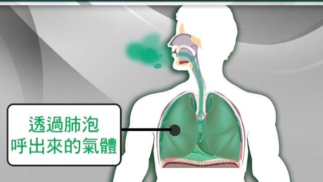避酒測招數破功!警:吹氣都是來自肺部