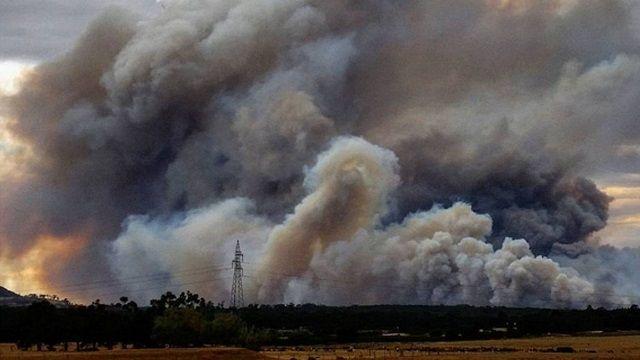 南半球熱浪侵襲!澳洲3800公頃森林大火