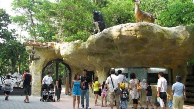 壽山動物園傳意外 2歲男童遭遊園車斷指