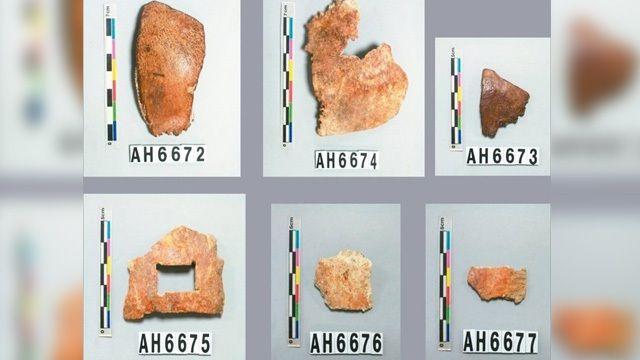 台灣最早人類   是不是左鎮人呢?