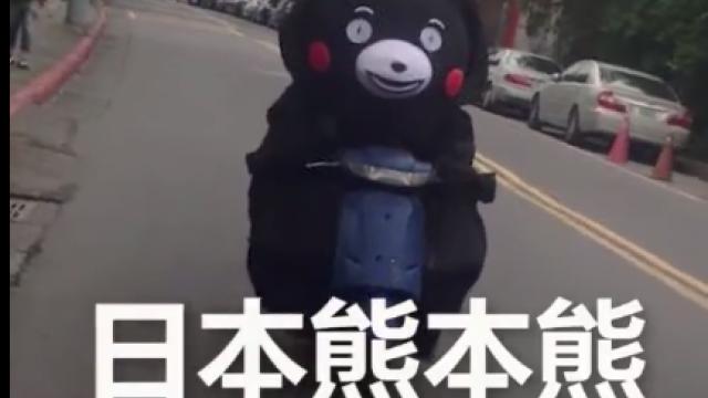 無違和!日本熊本熊學「逮丸郎」騎摩托車