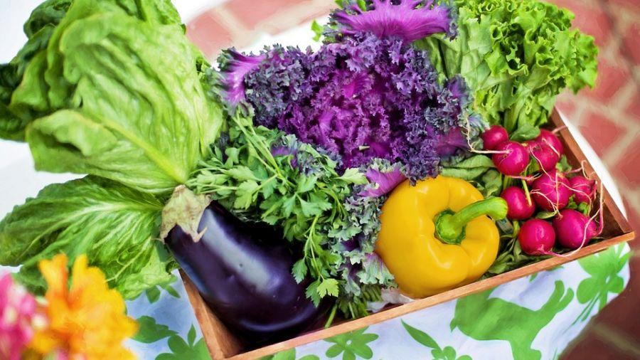 食安再爆!大賣場多樣蔬果農藥超標