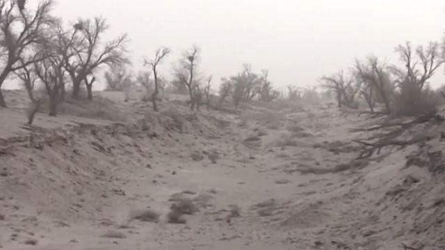 兩大漠東西夾擊 甘肅民勤沙漠化