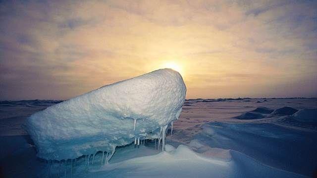 熱浪襲擊 氣象學者:未來恐現「無冰北極」