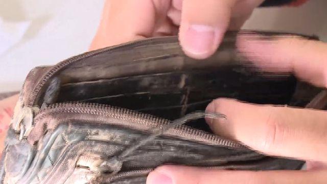 登山掉錢包 5個月後  山友拾獲寄還他
