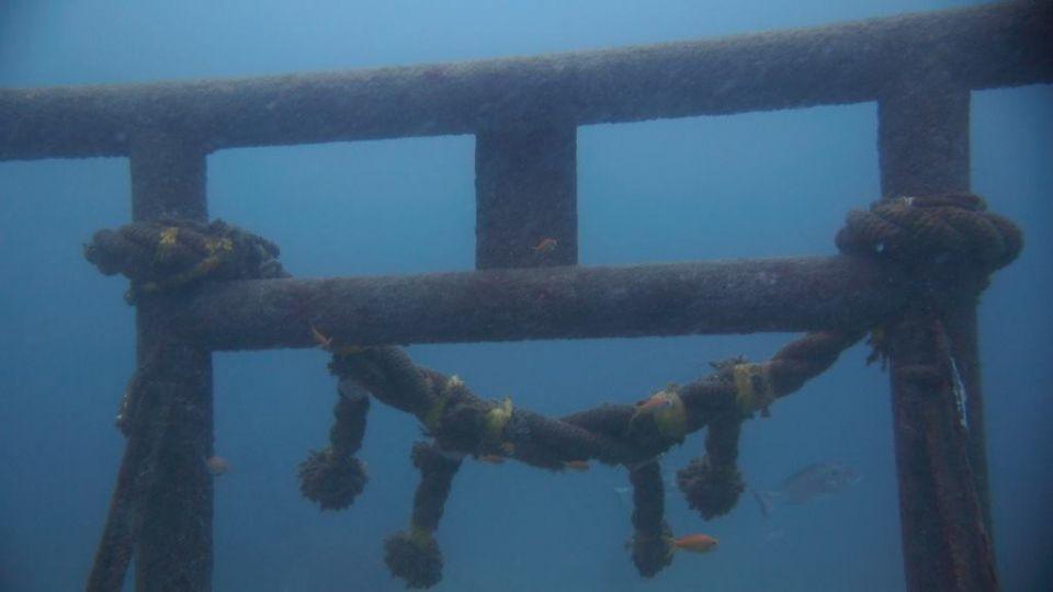 會潛水才到得了! 日魔幻奇特海底神社