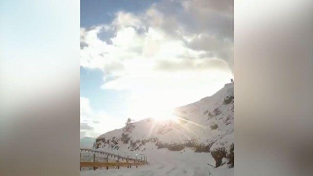 合歡山「銀白世界」 積雪深度約15公分