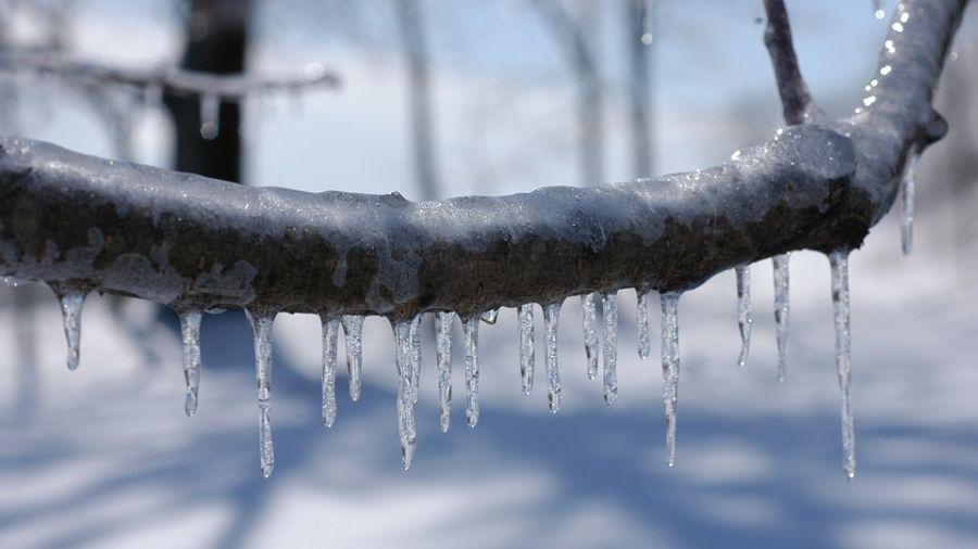北半球急凍!暴雪襲美6千萬人