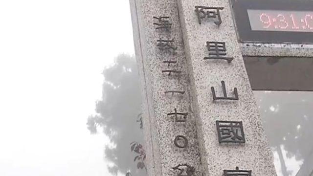 阿里山沒下雪! 遊客吹冷風 苦等一天