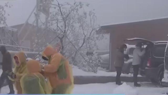 大雪持續「飄」 拉拉山雪白積雪深達10公分