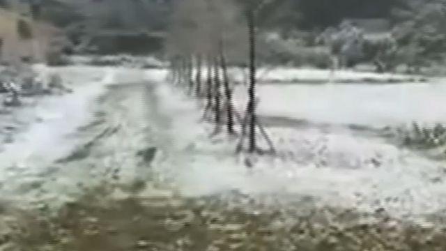 難見一見! 海拔500M雙連埤 86年首降雪