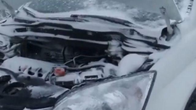 車也受害! 引擎室變冰箱 車主喊:救命!
