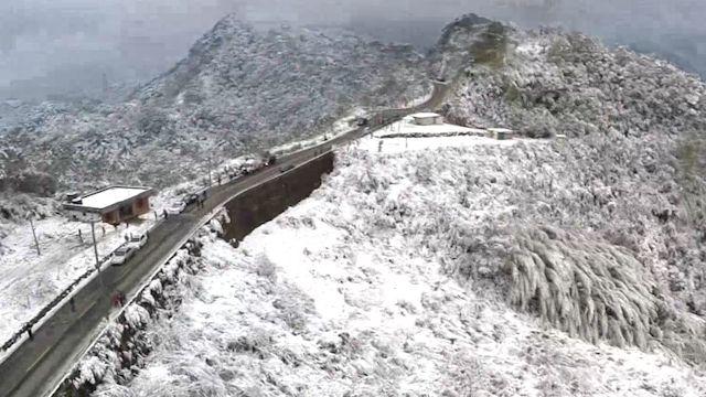 三峽插角里雪景 白雪覆蓋櫻花如「仙境」