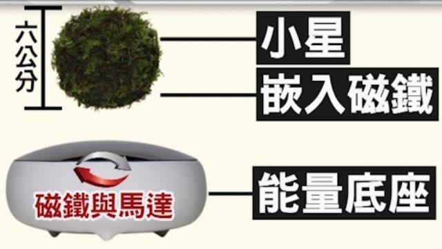 重現天空之城 新奇「飄浮盆栽」能360度旋轉