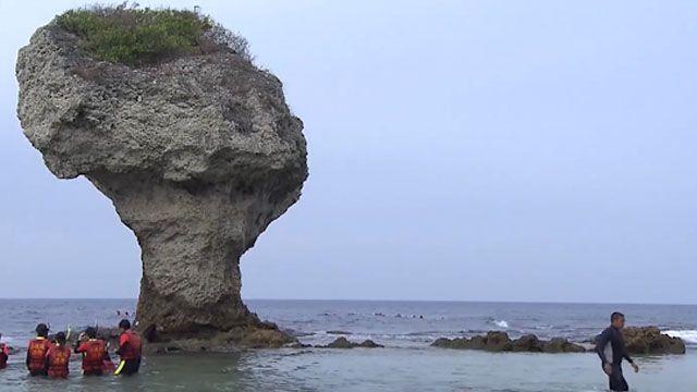 美麗琉球嶼竟成垃圾島?綠蠵龜保育大作戰