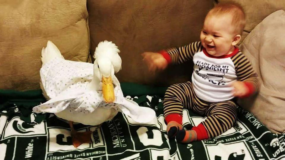 超友誼!Tyler與他的小鴨鴨