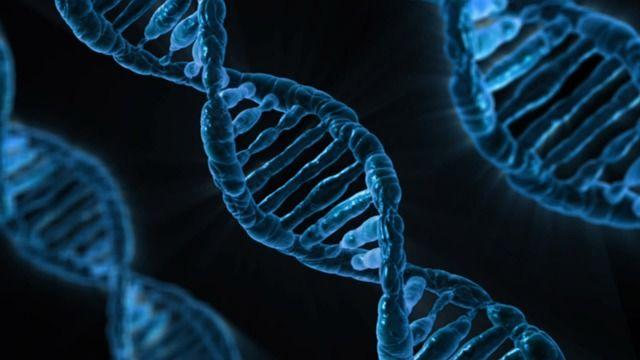 人扮演上帝? 英批准人類胚胎基改 道德挑戰