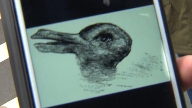 猜猜看是兔還是鴨? 一張圖看出你有沒有創意