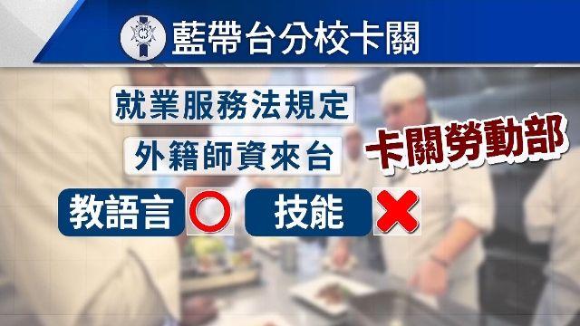 藍帶台灣分校法規卡關 名廚「只能教法語」