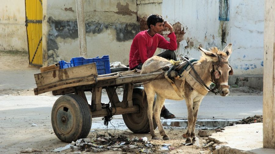 「賤民」發動抗爭 引爆新德里無水危機