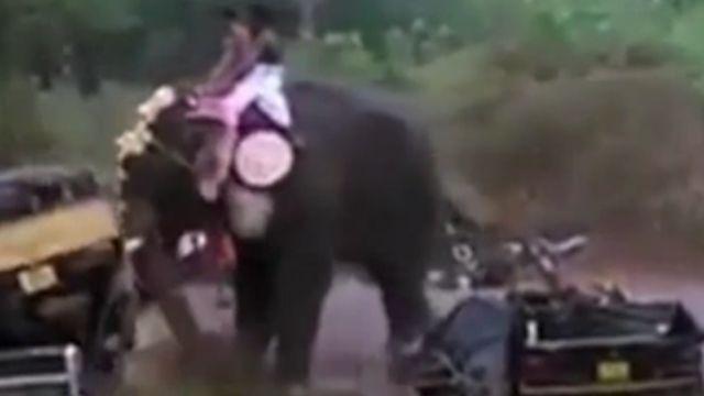 印度宗教遊行大象失控 搗毀路邊車輛