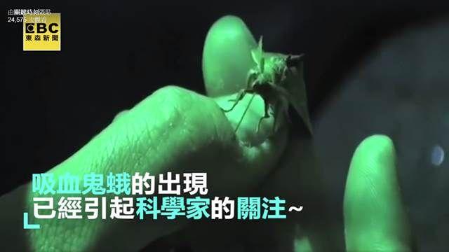 昆蟲界新發現!俄羅斯驚見怪異吸血生物?