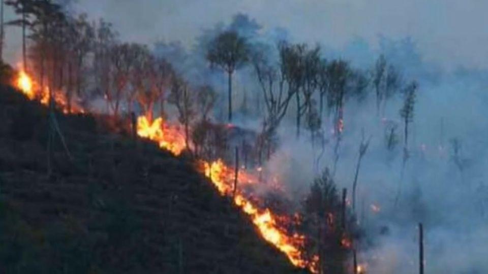 武陵農場附近火燒山! 火勢持續延燒中