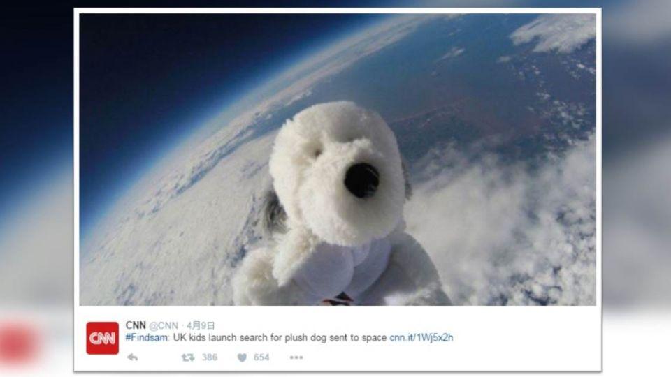 【影音】協尋「太空英雄狗」! 牠壯遊之後空中蒸發