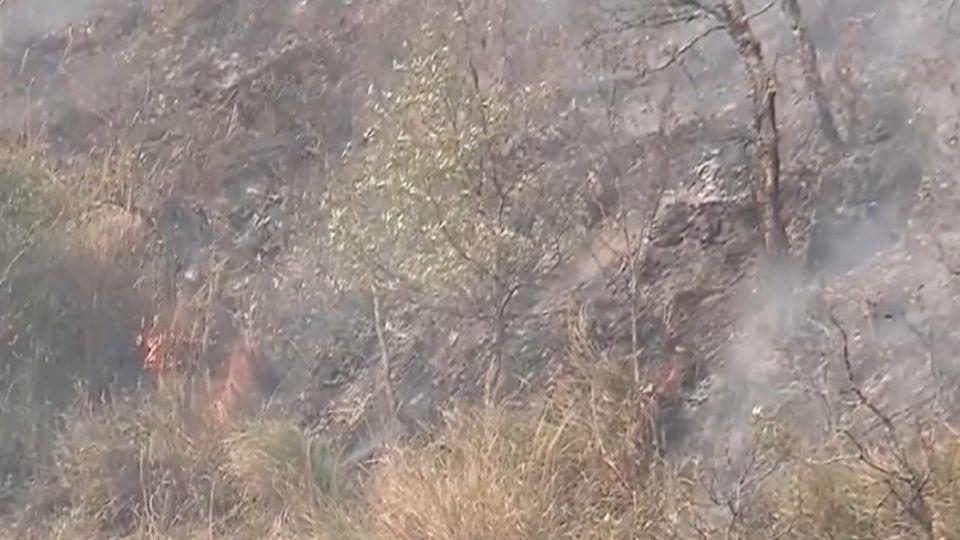 十萬火急!鄰武陵農場 台7甲火燒山逾10公頃難滅