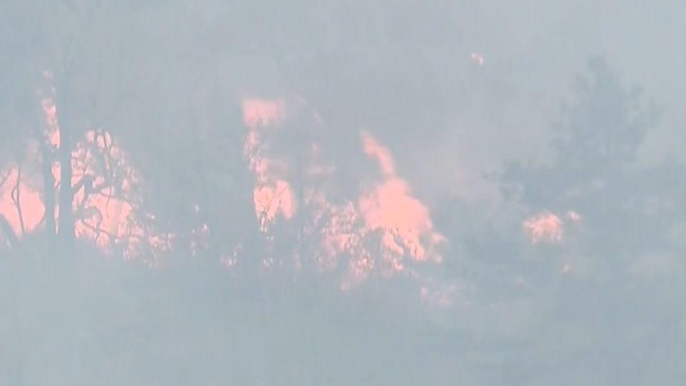 武陵農場附近火燒山! 燒逾12公頃未滅