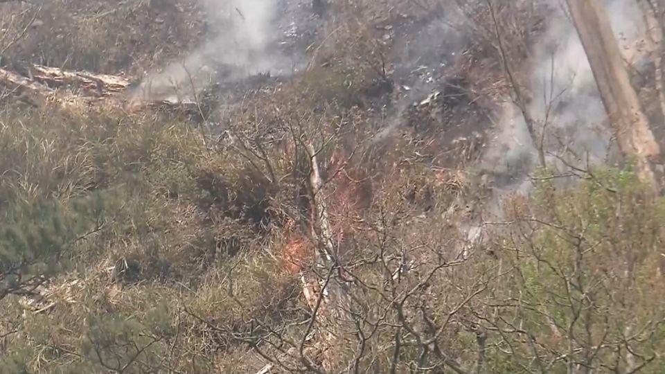 武陵附近火燒山已控制 監控後續殘火處理