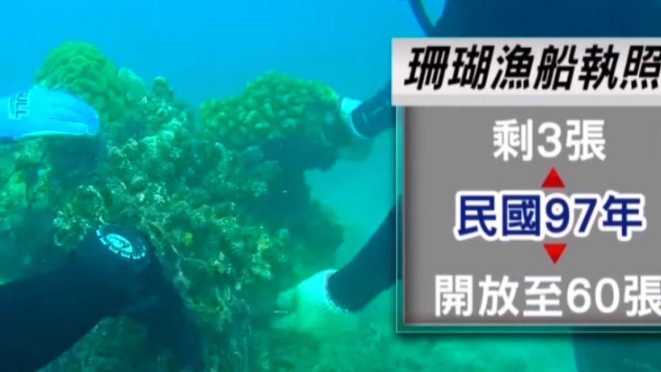 卸任農委會主委前 蘇嘉全開放60張珊瑚執照
