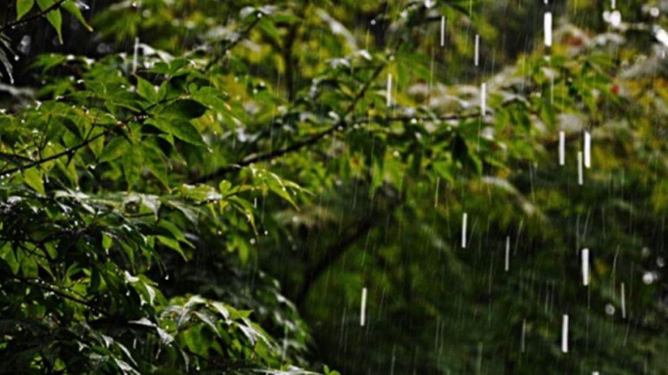 雨終於要停了!降雨趨緩 氣溫回暖最高31度