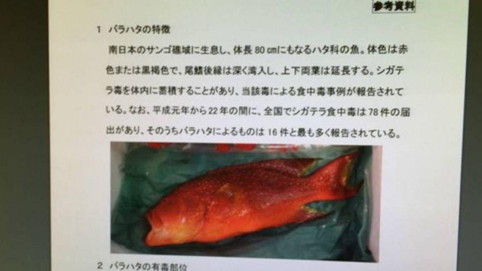 【影片】「東京」總動員!24小時揪毒魚 網友:真強國
