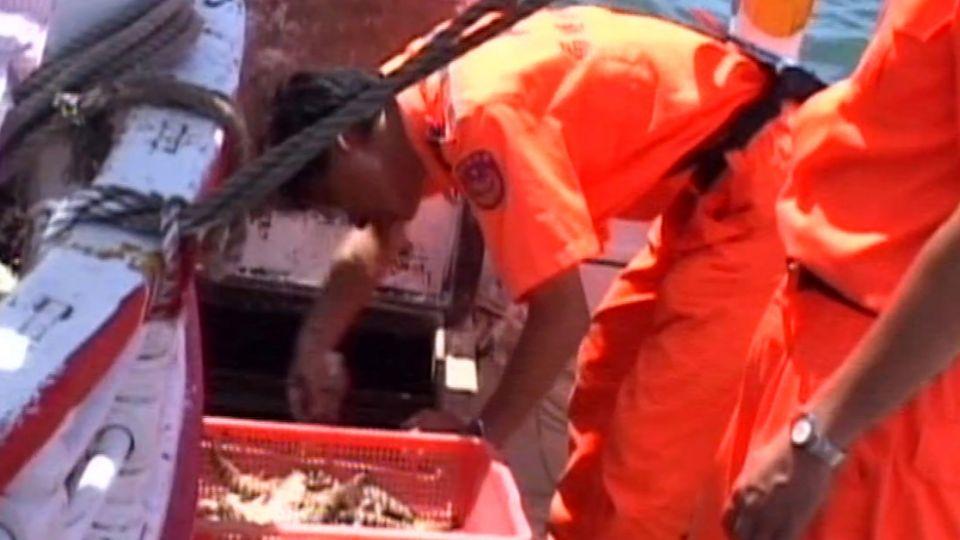 國家警察竟沒巡邏艇 遇違法捕魚「勸導無法罰」