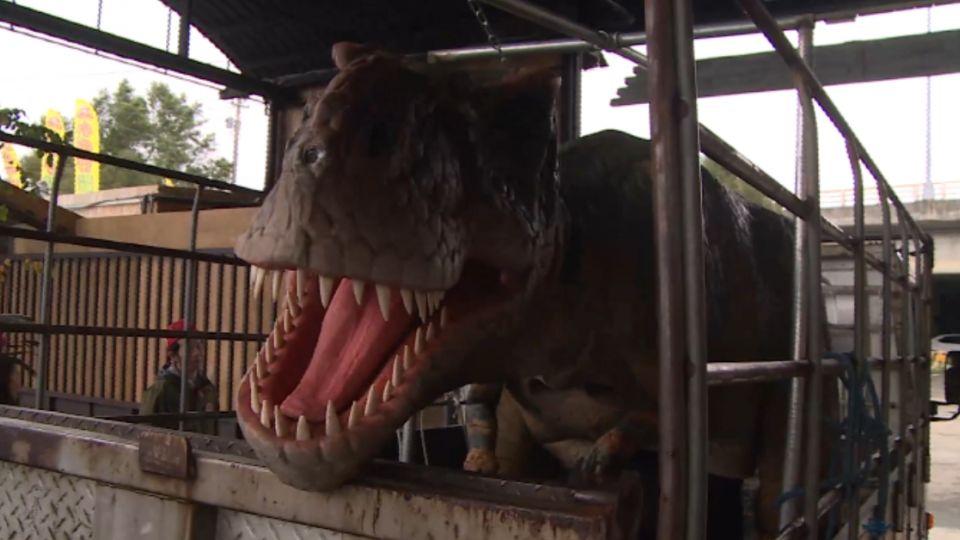 暴紅「恐龍」休閒園區 違法經營、恐勒令停業!