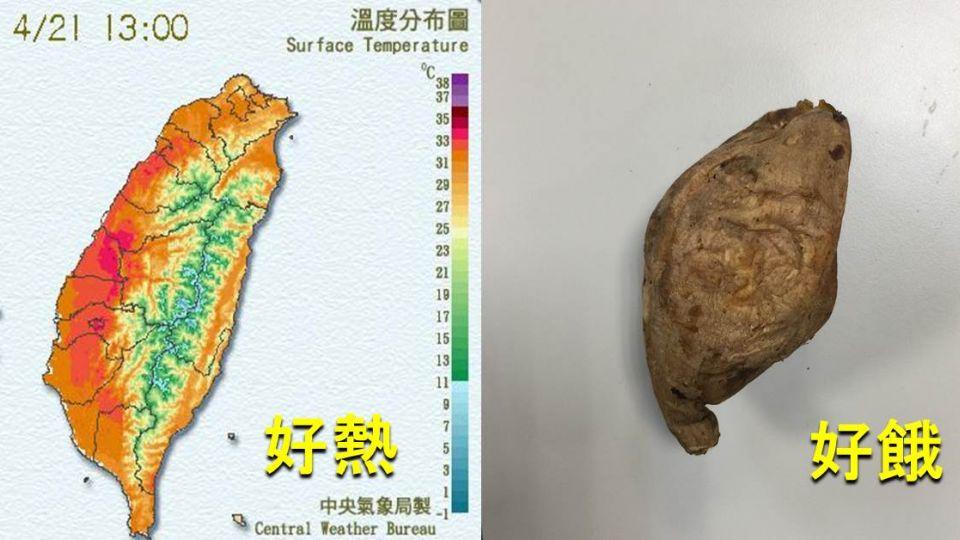 熱到破表!一張圖看見台灣變成「烤番薯」