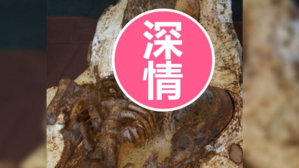 【影片】相擁4800年!台中母子化石出土 深情對望震撼人心