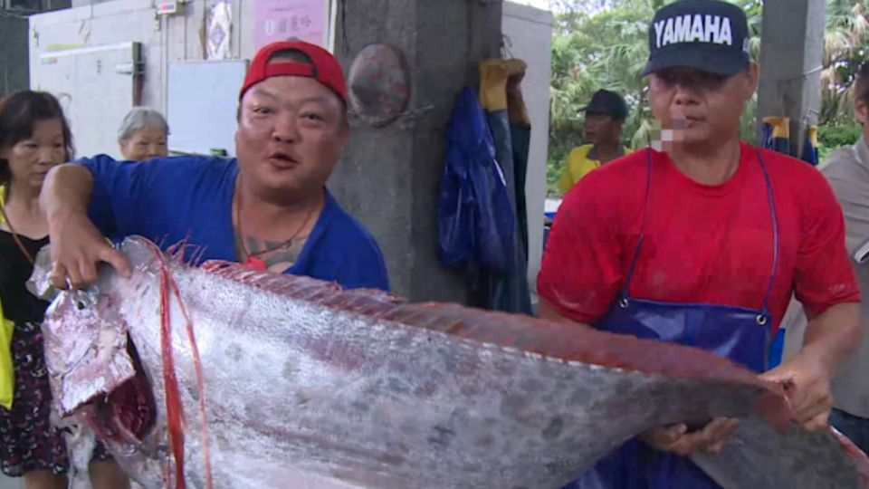 東部地震頻傳 台東漁民捕獲巨型地震魚