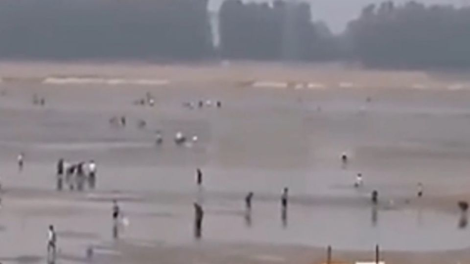 改造景觀湖水抽乾 民眾「瘋捕魚」警傻眼