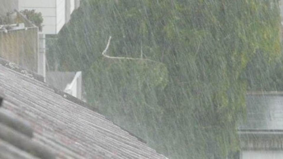 快買強傘!將入梅雨季 氣象局估:雨量正常