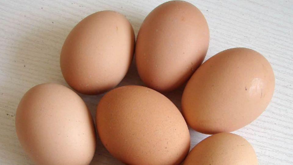 蛋殼長斑是細菌感染?農委會:賣勾黑白說!