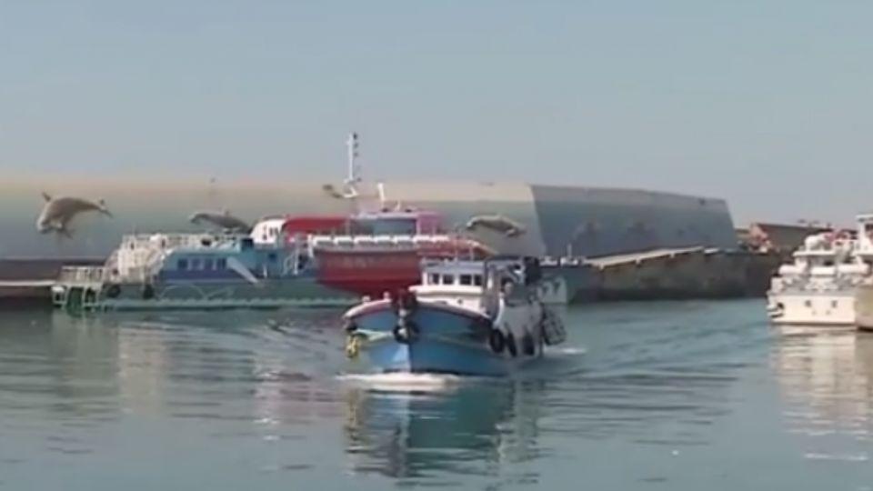 抗議停車將收費 24艘漁船卡富岡港口抗議