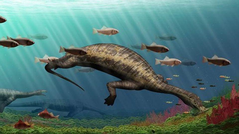 2.4億年前「史前海怪」恐怖錘子頭 卻是「呷素ㄟ」