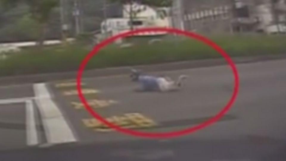 通緝犯逆向「跑給警察追」 2騎士無辜遭撞